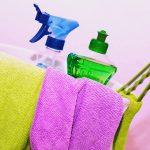 Hayvan Deneyi Yapmayan Ev Hijyeni ve Temizlik Markaları